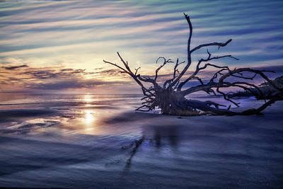 Dawn On The Coast Print by Debra and Dave Vanderlaan