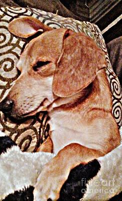 Dachshund Puppy Digital Art - Daydreaming Dachshund Doggie In/ Puppy Slumber by PrettTea Art Gallery  By Teaya Simms