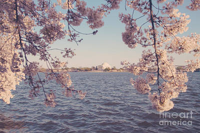 Us Capital Photograph - Dc Spring by Emily Kay