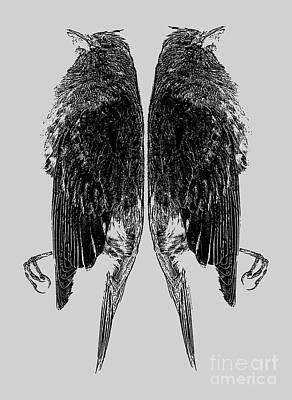 Lyrics Photograph - Dead Birds Tee by Edward Fielding