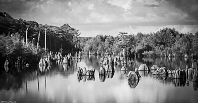 Cypress Stump Photograph - Dead Lakes Florida Black And White by Debra Forand