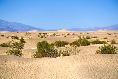 Death Valley Sanddunes Print by Lutz Baar