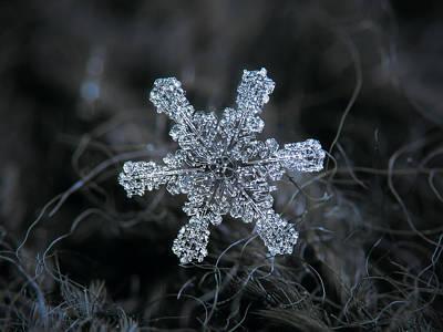 December 18 2015 - Snowflake 1 Print by Alexey Kljatov
