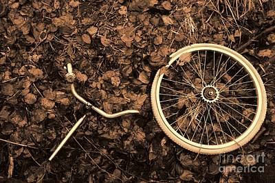Bicycle Photograph - Decomposed Bicycle Parts by Mikko Palonkorpi