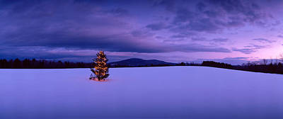 Decorated Christmas Tree In A Snow Print by Panoramic Images