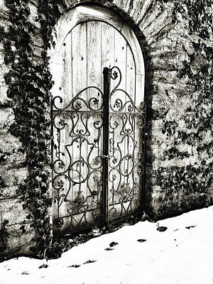 Photograph - Decorative Iron Gate by Traci Law