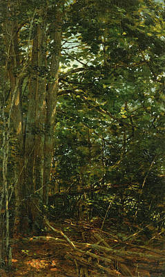 William Bliss Baker Painting - Deep In The Woods by William Bliss Baker