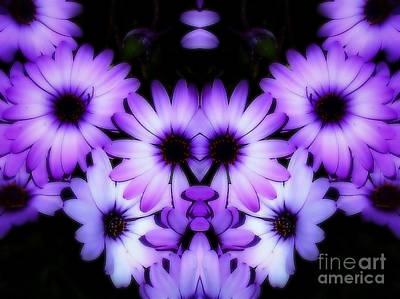 Abstract Flower Photograph - Deep Purple Daisies by Heather Joyce Morrill