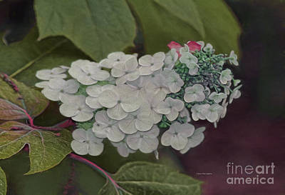 Ant Painting - Deland Garden Gem by Deborah Benoit