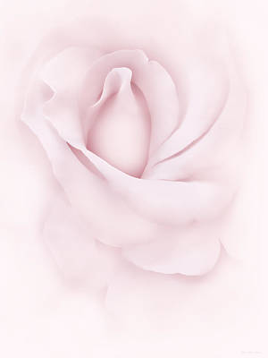 Delicate Pink Rose Flower Print by Jennie Marie Schell