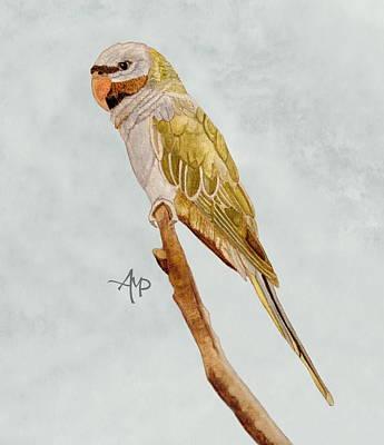 Parakeet Painting - Derbyan Parakeet by Angeles M Pomata