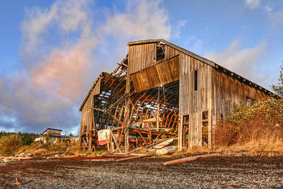 Derelict Boatshed Print by Darryl Luscombe