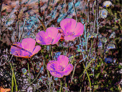 Desert Flowers Abstract Print by Penny Lisowski