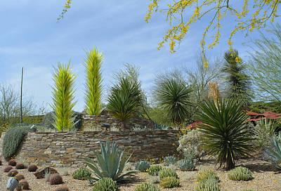 Saguaro Photograph - Desert Garden by Aimee L Maher Photography and Art Visit ALMGallerydotcom