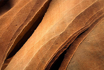 Valley Of Fire Photograph - Desert Lines by Mike  Dawson