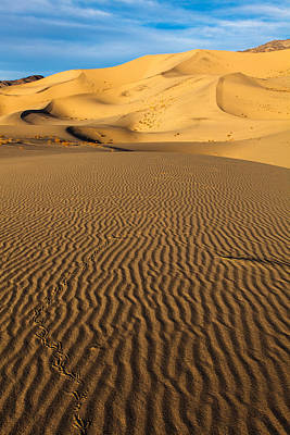Eureka Valley Photograph - Desert Meander  by James Marvin Phelps