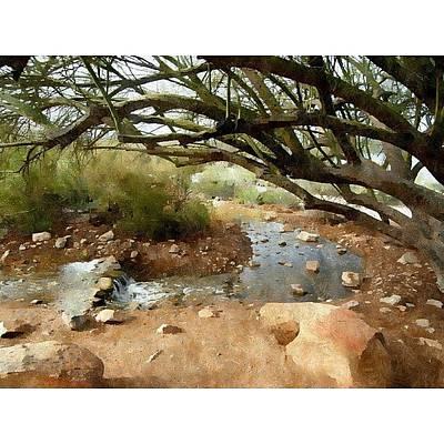 Desert Photograph - Desert Oasis Gilbert Riparian Preserve by Karyn Robinson