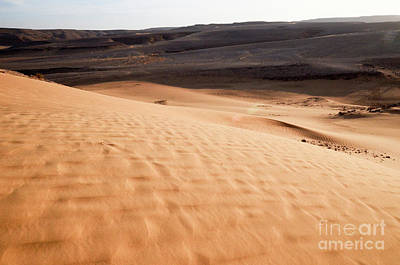 Beauty Mark Photograph - Desert Sand Dunes. 1 by Efraim Bar