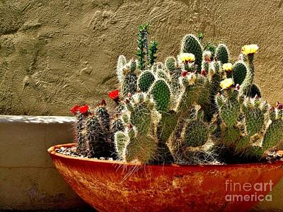 Clay Pottery Photograph - Desert Still Life by Marilyn Smith