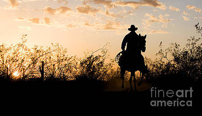 Horse Photograph - Desert Sunset Cowboy by Patty Hallman