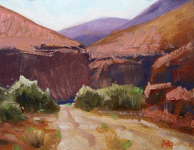 Sonora Painting - Desert Trail by Keith Nolan