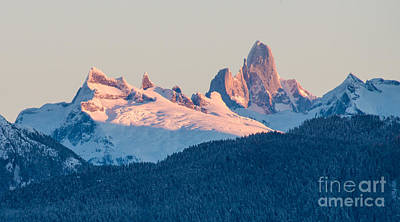 Devils Thumb Alpenglow Print by Mike Reid