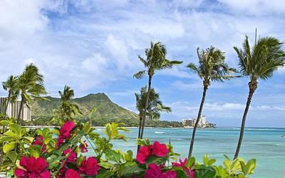 Waikiki Photograph - Diamond Head Scene by Tomas del Amo - Printscapes
