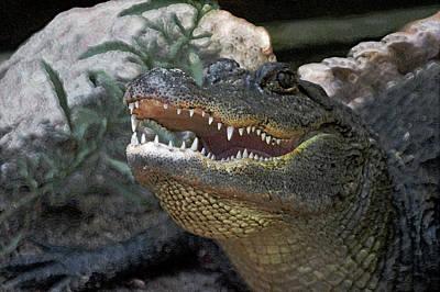 Alligator Digital Art - Did You Say Run by Ernie Echols