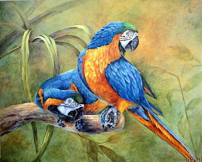 Blue And Gold Macaw Painting - Did You See That by Mary McCullah