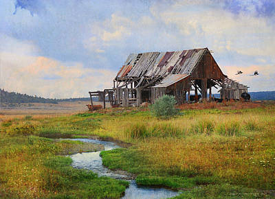 Magpies Digital Art - Dilapidated Weber Barn Near Mancos by R christopher Vest