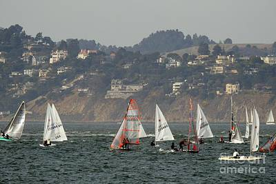 Sailing Photograph - Dinghies On The Frisco Bay by Scott Cameron