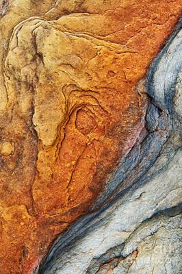 Dinosauric Print by Tim Gainey