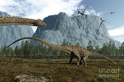 Diplodocus Dinosaurs Graze While Print by Walter Myers