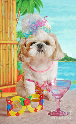 Hawaii Dog Photograph - Disgusted Party Girl by Anne Kitzman
