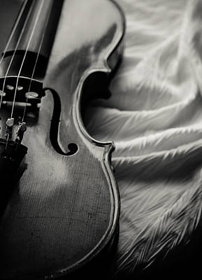 Violin Photograph - Disrobed by Maggie Terlecki