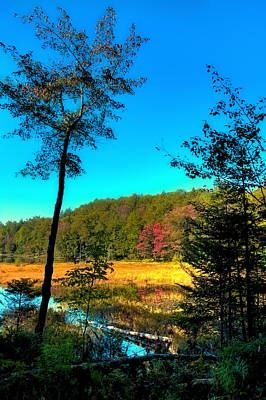 Fall Photograph - Distant Sunlight On Cary Lake by David Patterson