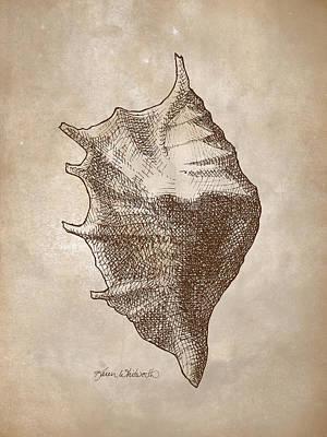 Distressed Antique Nautical Seashell 1  Print by Karen Whitworth