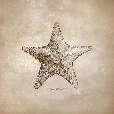 Sepia Ink Drawing - Distressed Antique Nautical Starfish by Karen Whitworth