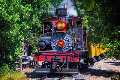 Old Trains Photograph - Dixiana Coming Through The Woods by Garry Gay