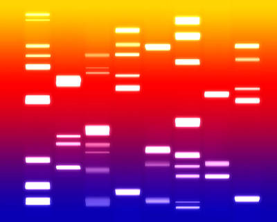 Dna Sunset Print by Michael Tompsett