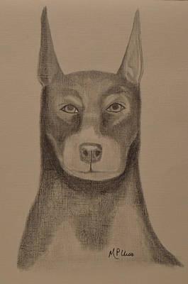 Doberman Drawing - Doberman by Maria Urso