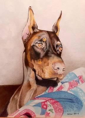 Doberman Drawing - Rudy by David Hoque