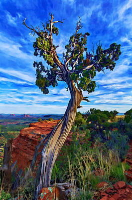 Manipulation Photograph - Doe Mountain Juniper by Bill Caldwell -        ABeautifulSky Photography