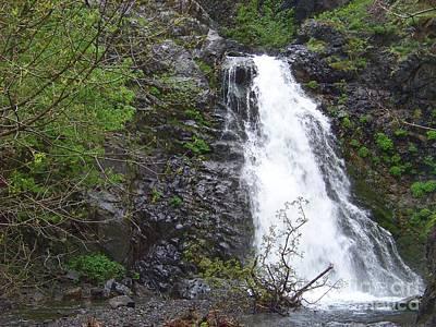 Columbia River Photograph - Dog Creek Falls 2 by Charles Robinson