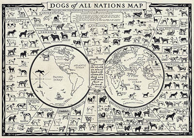 Newfoundland Puppy Photograph - Dog Lovers Map 1936 by Daniel Hagerman