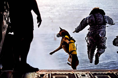 Working Dogs Photograph - Military Working Dog by Tech Sgt Manuel J Martinez