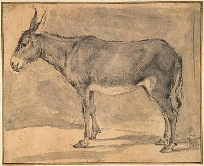 Drawing - Donkey by Pieter van Laer