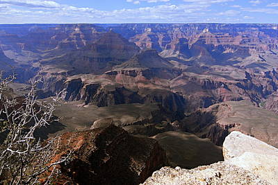 Grand Canyon Photograph - Don't Get Too Close To The Edge by Larry Ricker