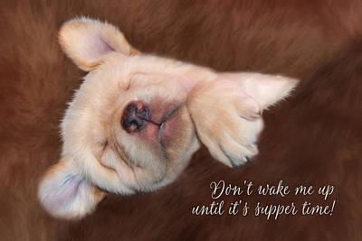 Don't Wake Me Up Print by Lori Deiter