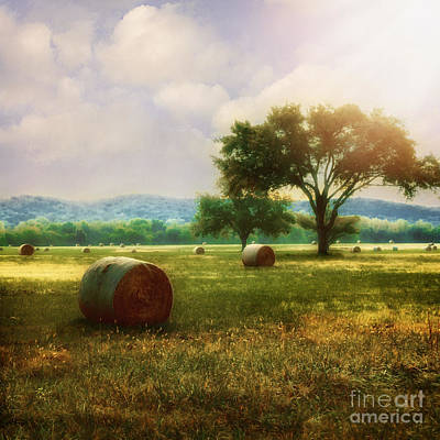 Photograph - Down In The Valley by Tamyra Ayles